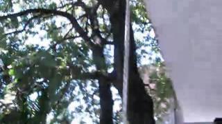 Продам дом в Круче, Черногория(http://www.maklera.net - фото видео объявления и публикации на карте. Дом в Круче (Бар, Черногория) на продажу. 5 мин..., 2011-07-24T11:09:32.000Z)