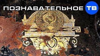 Египетские сфинксы советской Госшвеймашины Познавательное ТВ Артём Войтенков