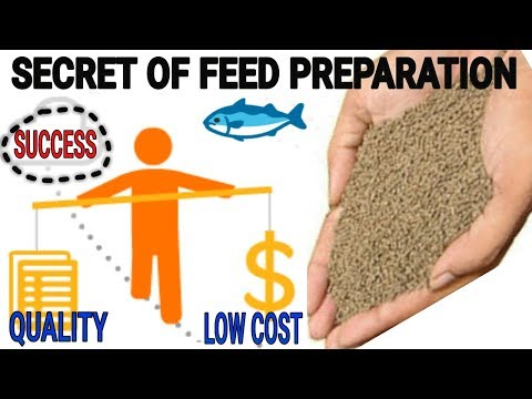 On Farm Key Factor Of Fish Feed Production | Secret Strategy To Reduce Feed Cost