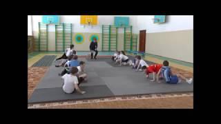 Урок физкультуры. Сычёв Е.Ю. ФГОС. Анализ урока. гимнастика