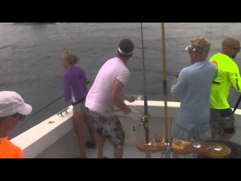 Must see!!!   Islamorada Blackfin Tuna and Mahi Mahi from Bud N Marys Marina