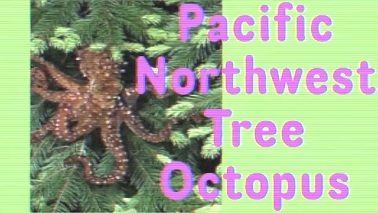 The Pacific Northwest Tree Octopus - YouTube