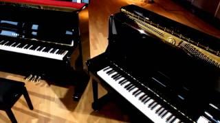 Yamaha Pianos P-Series (German)