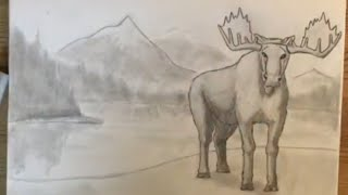 How to Draw a Moose