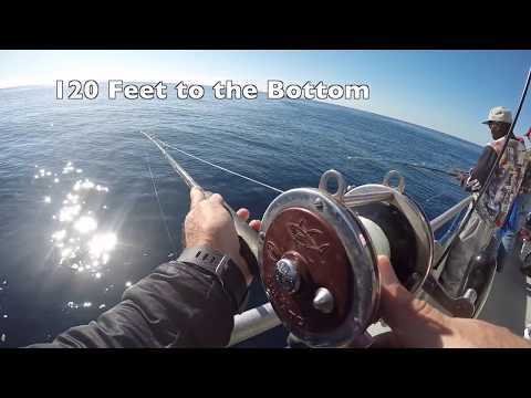 Fishing The Gulf Stream Off The South Carolina Coast.