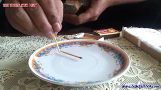 Test Magnetisme Mani Gajah