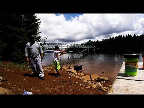 MEMORIAL DAY FISHING AT TIMOTHY LAKE OREGON