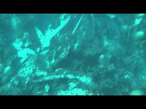 Bermuda Shipwrecks in HD