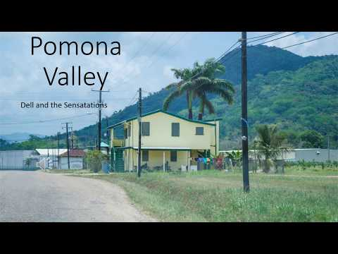 Pomona Valley by Dell and the Sensations