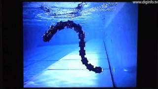 水陸両用ヘビ型ロボット - ACM-R5 : DigInfo