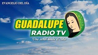 EVANGELIO DEL DÍA – 14 de mayo 2015 (Juan 15,9-17)