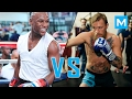 watch he video of Conor Mcgregor VS Floyd Mayweather | Muscle Madness