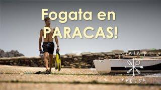 (9.93 MB) Viaja y prueba en Paracas, Ica Perú Mp3