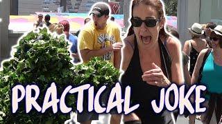 Funny Practical Joke - Bushman Scare Prank - Combined Episodes - Las Vegas - Funny Video Ryan Lewis