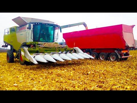 Уборка кукурузы комбайном CLAAS - 760 с 8 рядковой жаткой