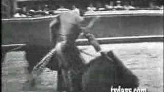 BULL FIGHTING MEXICO CITY LIVE TV