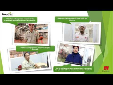 Optimised Business Improvement Programme, PZ Cussons