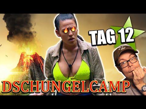 dschungelcamp-2020:-elena-explodiert!