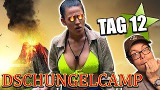 Dschungelcamp 2020: ELENA EXPLODIERT!