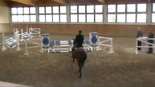Olivier K WE - Hengstleistungsprüfung 2013 (8,94!)