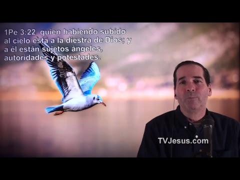 60 1 Pedro 3 - Ken Zenk - Estudios Biblicos