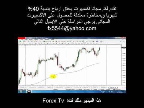 Sostratos forex broker investment science luenberger d g