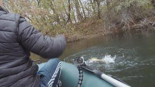 Кум всех порвал Твичинг в октябре Рыбалка на спиннинг воблерами осенью на малой реке Сейм