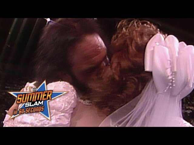 SummerSlam in 60 Seconds: SummerSlam 1991