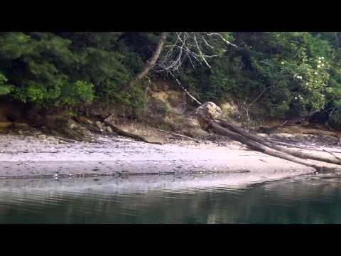 Wolf Creek Reservoir Kayak Camp