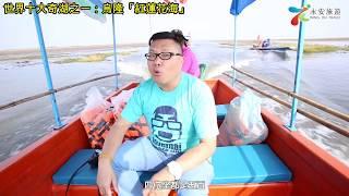 泰國通胡慧沖,精彩泰國視頻:世界十大奇湖~泰國烏隆「紅蓮花海」