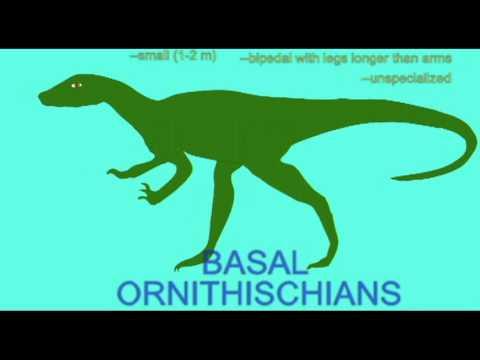 PL2_BASAL ORNITHISCHIANS