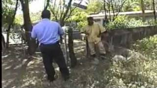 Repeat youtube video POLICÍAS AGREDIDOS CON CUCHILLO  EN NICARAGUA.mpg