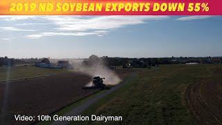 North Dakota Soybean Exports Down 55%
