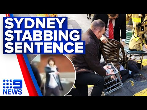 Man jailed for murder and Sydney stabbing rampage | 9 News Australia