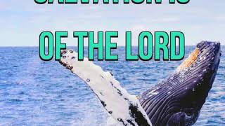 KJV Bible Songs: Salvation is of the Lord (Jonah 2:7,9)