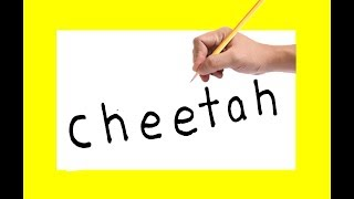 How to draw a CHEETAH using the same words cheetah in to cartoon for kids drawing
