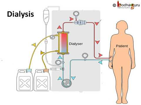 Components In Urine And Dialysis Process Hindi