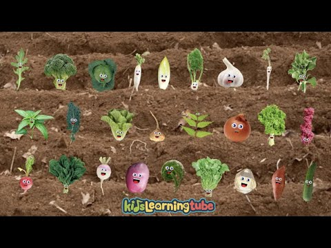 Vegetable Song for Kids- Sing along with the lyrics below