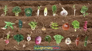Vegetable Song For Kids  Sing Along With The Lyrics Below