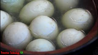 Primitive Technology - Cooking on a rock - Eating baby egg ducks claws delicious