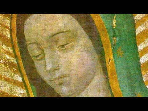 The Amazing And Miraculous Image Of Our Lady Of Guadalupe