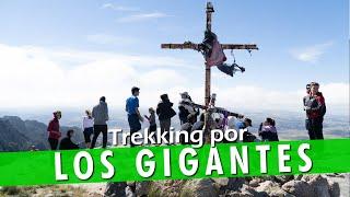 Los Gigantes y Cerro de la Cruz | Experiencias Hoy No Duermo en Casa