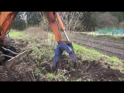 素人がユンボのハサミで雑木を引き抜けるのか