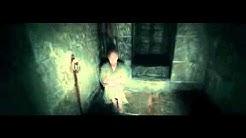 Harry Potter & the Deathly Hallows Part 1: Voldemort finds Gellert Grindelwald (HD)