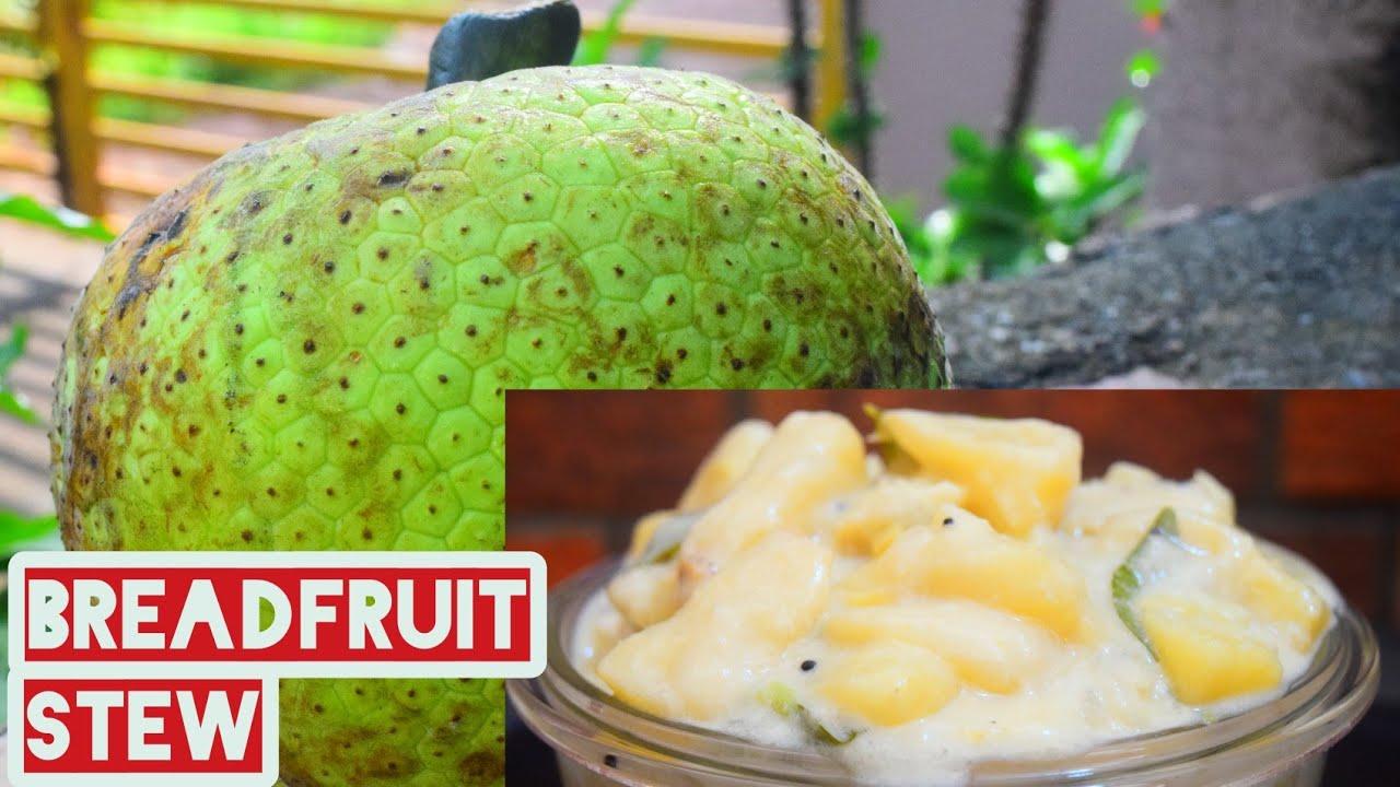 കടച്ചക്ക/ ശീമച്ചക്ക സ്റ്റു  വളരെ  എളുപ്പത്തിൽ തയ്യാറാക്കാം.  breadfruit stew with coconut milk