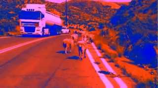 ELECTRIC ORANGE - Raumschaf (official video)