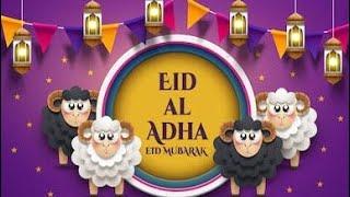 Bakra Eid Special Status 2019 Eid Ul Adha Whatsap
