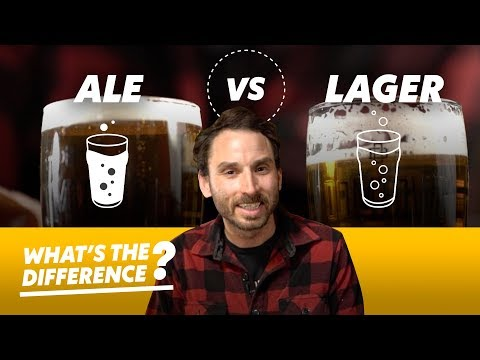 Ale vs. Lager Beer — What's the Difference?