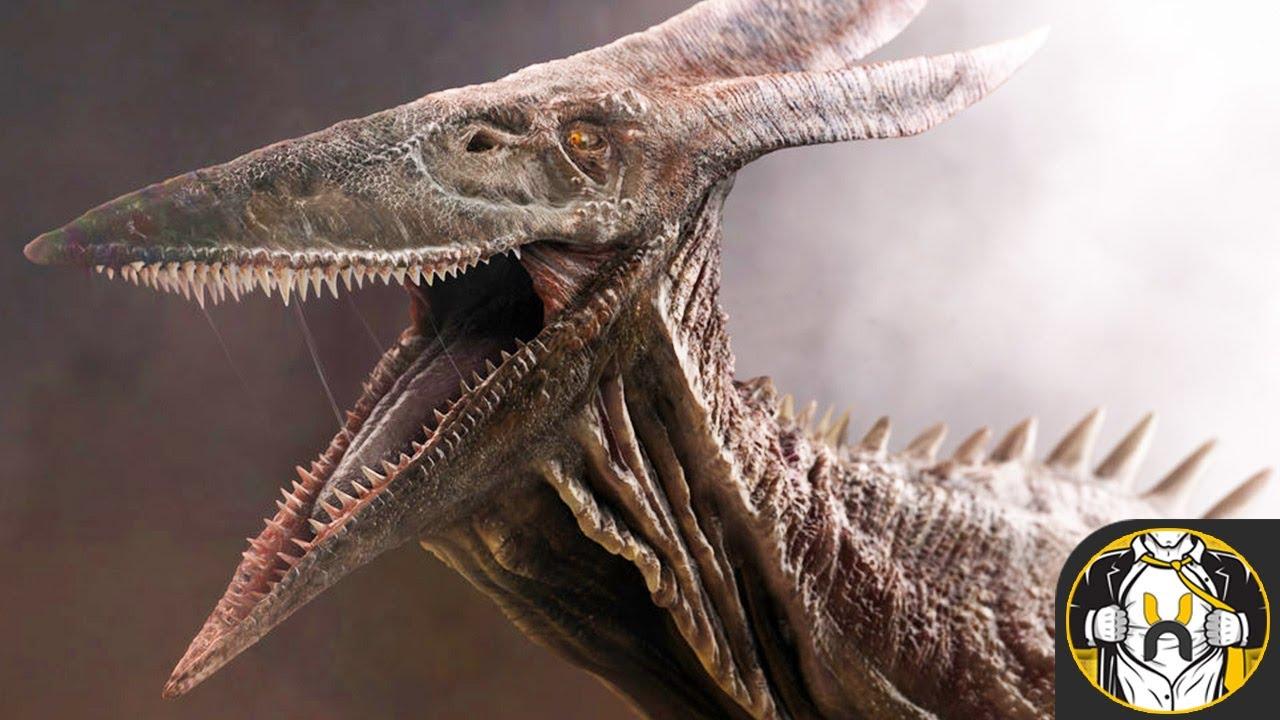 08ae280578b History of Rodan (Showa Era) | Godzilla: King of the Monsters - YouTube