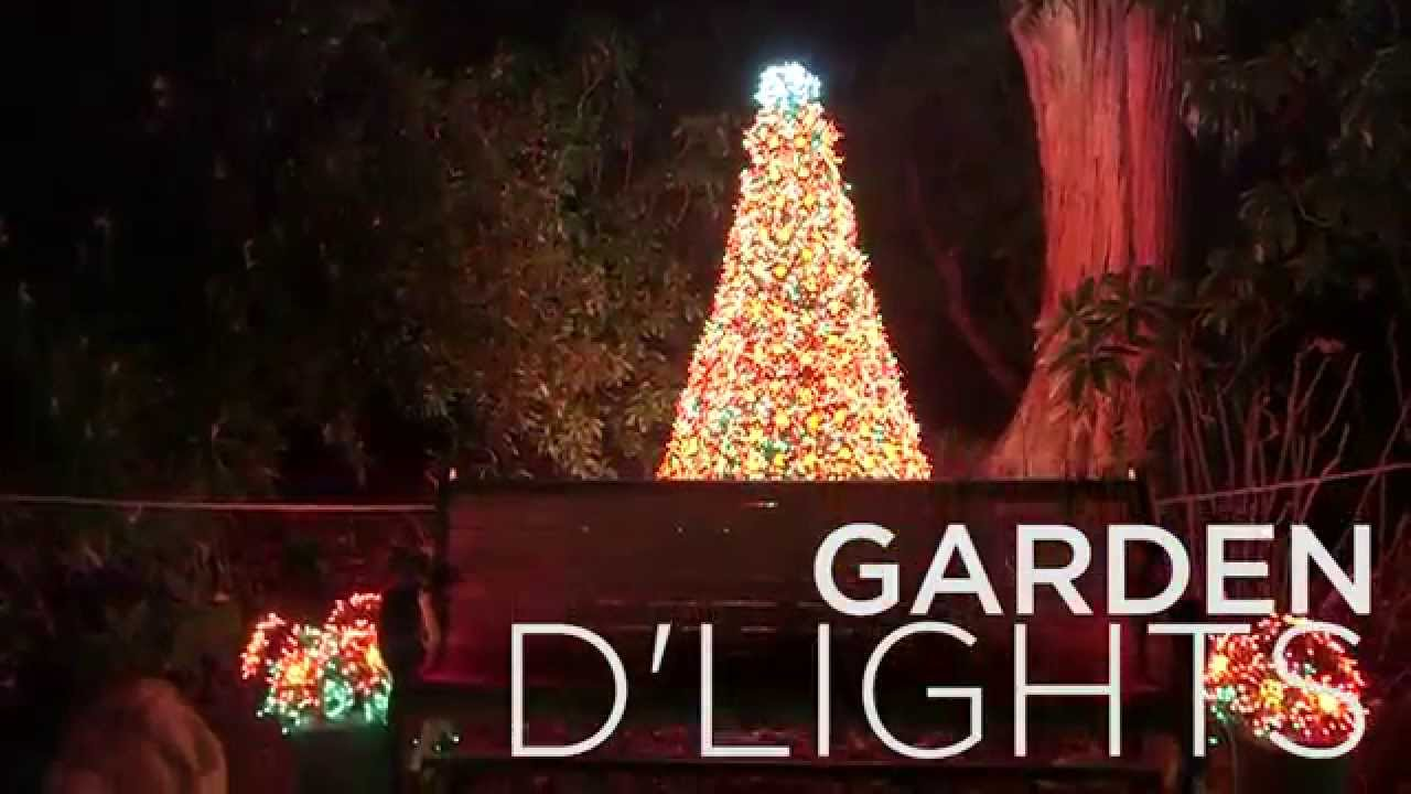 garden dlights at bellevue botanical gardens - Bellevue Christmas Lights